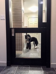 Dog Friendly Laundry Mudroom Kennel Space With Glass, Dutch Pocket Door To Make  Pet Comfortable