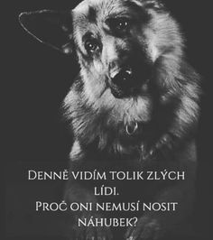 Diary Quotes, Dog Quotes, English Words, True Words, Wallpaper Quotes, Motto, True Stories, Karma, Slogan