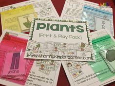 Plants Print & Play