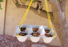 Comederos de pájaros para hacer tu mismo