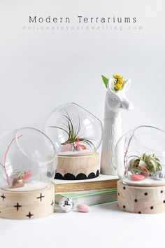 DIY Minimal Terrarium Tutorial - A modern take on a traditional plant terrarium! Painted Crosses, Scallops and Polka Dots add the perfect pattern to the wood base, and air plants make for a low maintenance gift idea or home decor gifts. A garden anybody can keep alive! ;) Delineate Your Dwelling