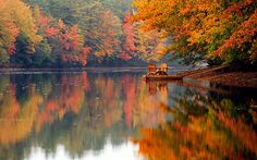 fall-inspired:    Falling leaves, cozy sweaters, apple pie…click here for more autumn goodness!    oh to sit in those seats in the cool of the autumn day feeling the kiss of the warm sun upon my face …