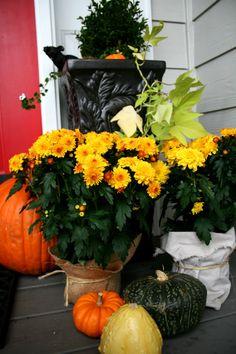 Fall Porch   Halloween   Harvest   Decorating for Fall   TodaysCreativeBlog.net