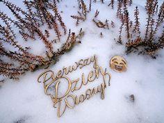#pierwszydzienwiosny #firstdayofspring #wiosna #spring #snow Spring, Bracelets, Gold, Jewelry, Jewlery, Jewerly, Schmuck, Jewels, Jewelery