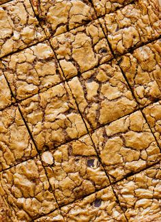These delicious blondies are naturally sweetened with coconut sugar! cookieandkate.com
