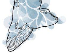 Watercolor Whale by Adam Dixon