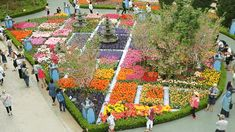 You Must Go(gh) To This Tulip Festival in Singapore, Held in The World's Largest Glass Greenhouse! Beautiful Places To Visit, Most Beautiful, Tulip Festival, Singapore Travel, Instagram Worthy, Tulips, Dolores Park, World, Outdoor Decor