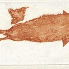 Zirkulationszeit: Meerengel Robbe III (Museum Edition) Museum, Joseph, Angel, Artworks, Museums
