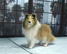 Collie 1/12 scale Designer Dog Miniature
