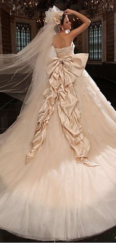 Wedding Dress-- HOLY CRAP what a bow!!! I love the color, the dress is a little funky lol.