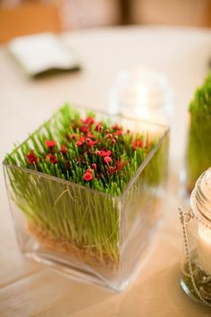 Rustic Spring Texas Ranch Wedding Wedding Reception Photos on WeddingWire Greenery Centerpiece, Centerpieces, Spring Texas, Texas Ranch, Wheat Grass, Party Ideas, Gift Ideas, Image Photography, Real Weddings