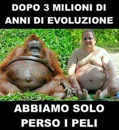 Evoluzione? ??