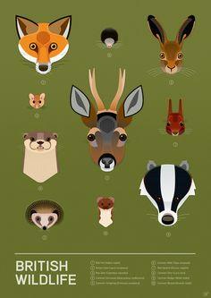 British Wildlife Poster Art Print