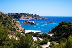 Ibiza, isla paradisíaca plagada de medicinales