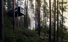 Scandinavian tree house, need I say more?