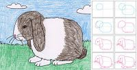 How to draw a floppy-ear bunny