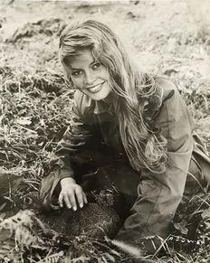 Photoreporters / Ipol archives - Brigitte Bardot - 1956