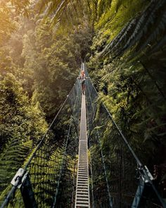 Weekends are made for adventuring👌  @wildbonde recently captured the lush greens of the West Coast on the swing bridge at @tasmania's highest waterfall, Montezuma Falls. One of the best ways to appreciate the magnitude of the falls is by crossing the bridge, and of course looking down to marvel at the gorge below. Who has visited, and had the courage to look down!?🙈