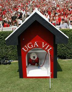 Uga VII, Georgia Bulldogs mascot.