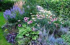 Garden Shrubs, Lawn And Garden, Garden Plants, Feng Shui, Turbulence Deco, Farmhouse Garden, Garden Borders, Colorful Garden, Flower Beds