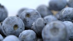 Stock video footage . 00:00:18 . From $25. Royalty free. Download now on Pond5 >>> Video Footage, Stock Video, Stock Footage, Blueberry, Royalty, Free, Royals, Berry, Blueberries