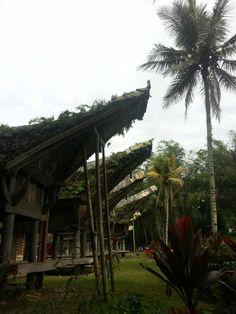 Tongkonan, Tantor indonesia