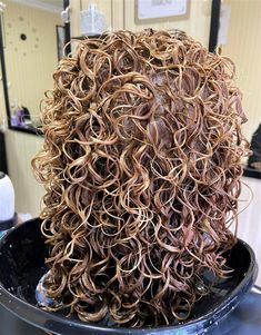 Permed Hairstyles, Dreadlocks, Perms, Hair Styles, Ethnic Recipes, Beauty, Perm Hairstyles, Hair Plait Styles, Hair Perms