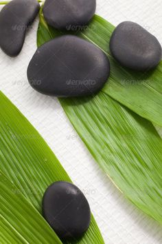 Spa massage stones on bamboo leaves ...  alternative, background, bamboo, basalt, bio, bodycare, care, concept, eco, foliage, fresh, green, healing, health, healthcare, hot stone massage, leaves, lifestyle, massage, medicine, natural, nature, pampering, plant, rejuvenation, relaxation, resort, smooth, spa, stones, therapeutic, therapy, treatment, vitality, wellbeing