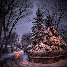 The Wolseley neighbourhood, Winnipeg, Manitoba. The Great White, Town And Country, What A Wonderful World, Winter Scenes, Something Beautiful, Wonders Of The World, Winter Wonderland, Labrador, Cities