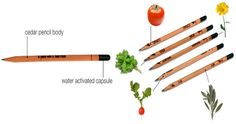Enter to WIN Plant Pencils