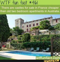 Wtf fun fact #4161