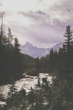 Yoho National Park II ➸ Luke Gram