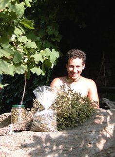 Pantelleria - Capers.