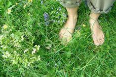 Parcours pieds nus dans la nature : ce bon plan Loisirs, Loisirs fun a lieu à Base de Plein Air et de Loisirs de Buthiers.