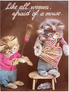 """Like all women, afraid of a mouse."" Vintage Dressed Cats"