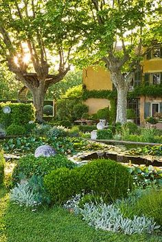This stunning garden was designed by Dominique Lafourcade who has created something very special indeed.love how green and peaceful it is, complete with plane trees and viewing platform! Porches, The Constant Gardener, Mediterranean Garden, My Secret Garden, Water Lilies, Exotic Flowers, Dream Garden, Hedges, Gardening