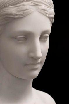 Orang Utan, Inspiration Artistique, Sculpture Head, Greek Statues, Marble Art, Greek Art, Aphrodite, Art Sketchbook, Portrait