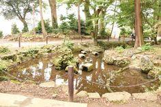 伊豆山神社 2016.11