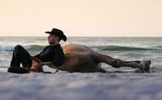 Horse - hanging out on the beach