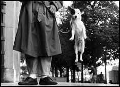 Paris, 1989. -repinned by Los Angeles County, CA studio photographer http://LinneaLenkus.com #famousphotographers