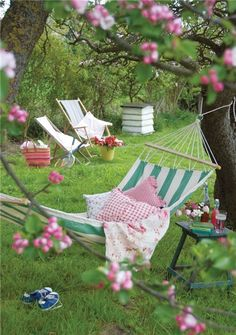 Hammock Under Blossom Tree: Need to plant two trees and groom them for hammock hanging!