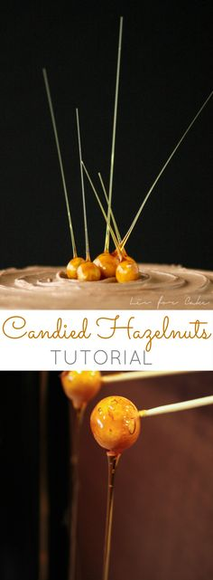 Candied hazelnuts are a stunning garnish to any dessert. A quick and easy tutorial on how to make these stunning candied hazelnuts. Gourmet Desserts, Fancy Desserts, Plated Desserts, Just Desserts, Health Desserts, Decoration Patisserie, Food Decoration, Decorations, Cheesecake Decoration