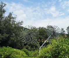 Parco di Pinocchio L'Albero della cuccagna