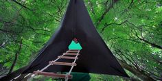 These amazing hammock tree tents are the coolest portable tree forts!