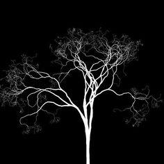 [Desejo  Sonho É planta É  flora Que aflora Que cresce  Floresce ]  Gostou? Curta nossa página e compartilhe nossa arte!  Imagina vestir a arte entrama? Confira o nosso site, entregamos em todo o Brasil!  http://entrama.com.br  Facebook facebook.com/arte.entrama  Twitter: @Arte.Entrama  Pinterest: pinterest.com/arte.entrama  #entrama #arte #design #poesia #árvore #desejo #flora #planta #floresce #cresce