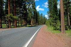 Highway 26 in the Ochoco Mountains. (Photo No. croD0029)