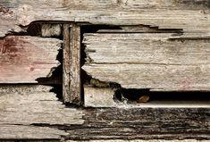 Wood planks, splintered  #wood #splintered #old