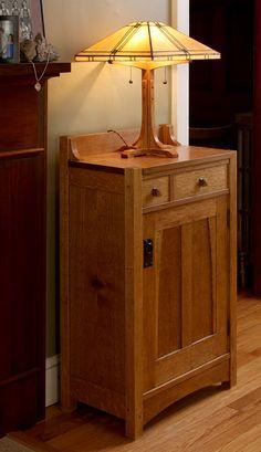 Michael Pekovich's biobrick cabinet