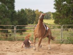 How to Avoid Injury when Falling off a Horse -- via wikiHow.com