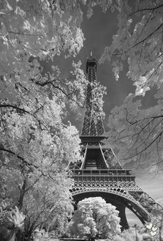 ❤ Paris. Been there, like it.
